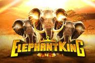 Elephant Kings
